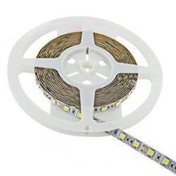 WE LED páska 5m SMD50 60ks/14.4W/m 10mm studená