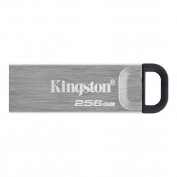 256GB Kingston USB 3.2 (gen 1) DT Kyson