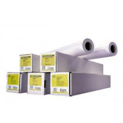 "HP Heavyweight Coated Paper - role 24"" (C6029C)"